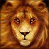 african-simba-loewe