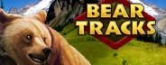 bear tracks banner