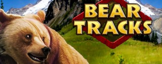 bear tracks banner medium