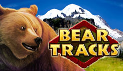 bear-tracks-logo