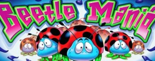 beetle mania medium