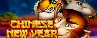 chinese new year banner medium