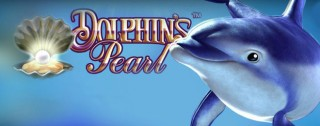 dolphins pearl medium