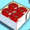 Donuts Schachtel