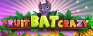 fruit bat crazy banner