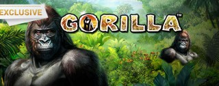 gorilla banner medium