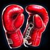 knockout-wins-boxhandschuhe