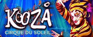 kooza banner medium