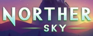 northern sky banner medium