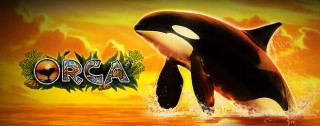 orca banner medium
