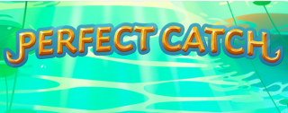 perfect catch banner medium