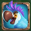 Pirates Papagei