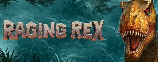 Raging Rex BAnner