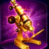 reel-attraction-mikroskop
