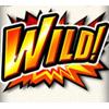 roaring-forties-wild