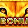 serengeti heat bonus symbol