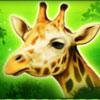 serengeti heat giraffe