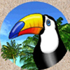 tropical-heat-tucan