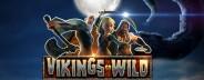 vikings go wild banner