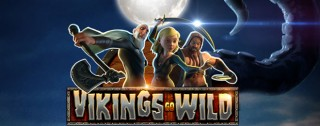 vikings go wild banner medium