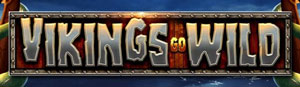 Vikings Go Wild Schriftzug