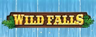 wild falls banner medium