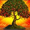 wishing-tree-wunschbaum