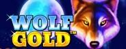 wolf gold banner