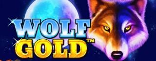 wolf gold banner medium