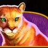 Wolf Gold Wildkatze